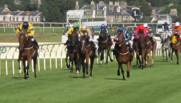 TER Racing at Musselburgh (1)