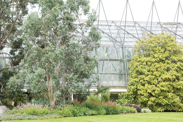 TER Glass houses Botanics