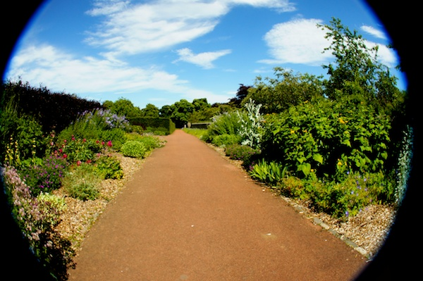 TER Saughton Park