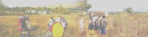 highland malawi trust
