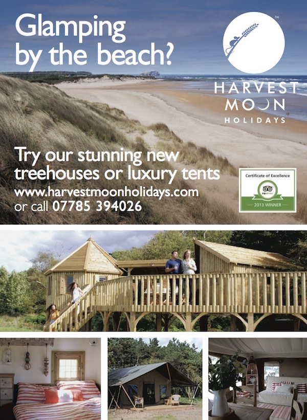 Advert - Scotsman 2014 (Treehouse) SEM647341harvest moon prev ad.