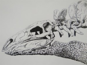Stegasaurus by J Crozier, one of the 2013 winners in the over-21 section