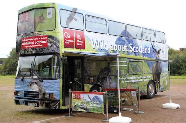 Wild About Scotland Bus 1