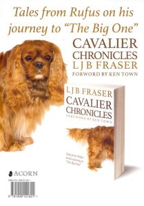 cavalier chronicles at colinton library jan 2015