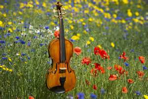 wilfred owen violin