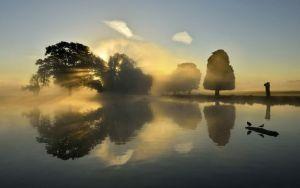 Breathing Spaces: Morning in Bushy Park, by Kassia Nowak
