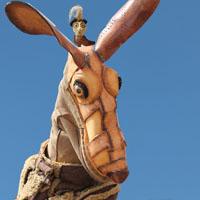 shoe kangaroo