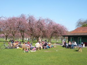 Voters enjoy a sunny day on the Meadows and a break from the election