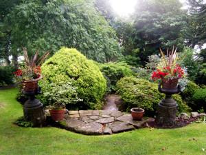 dr neil's garden 3