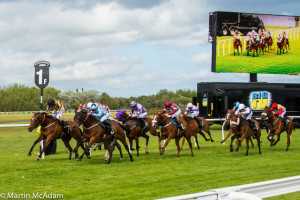Musselburgh Racecourse - flat race meeting @ Musselburgh Racecourse | Musselburgh | Scotland | United Kingdom