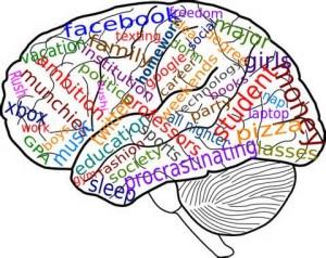 clip art brain