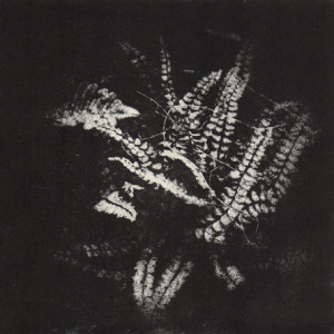 photography in print at ed printmakers 2