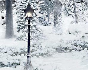 narnia lamp post | The Edinburgh Reporter