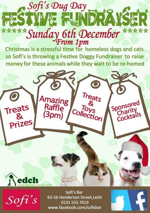 sofi's dug day festive fundraiser