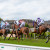 Musselburgh Races Action Shot