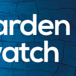 big garden birdwatch 2