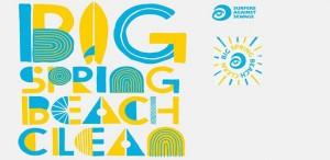 big beach spring clean 2016