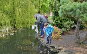 pond dipping lauriston castle