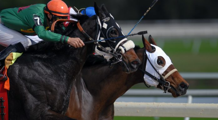 A picture of a horse race